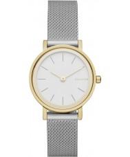 Skagen SKW2445 Damen hald Silber Stahlgitter Armbanduhr
