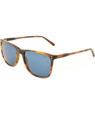 Polo Ralph Lauren Ph4102 55 klassisches Flair havanna 501.780 Sonnenbrillen